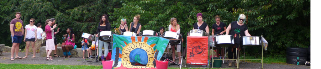 Foxwood and Friends at Rosebank Millennium Green 2015