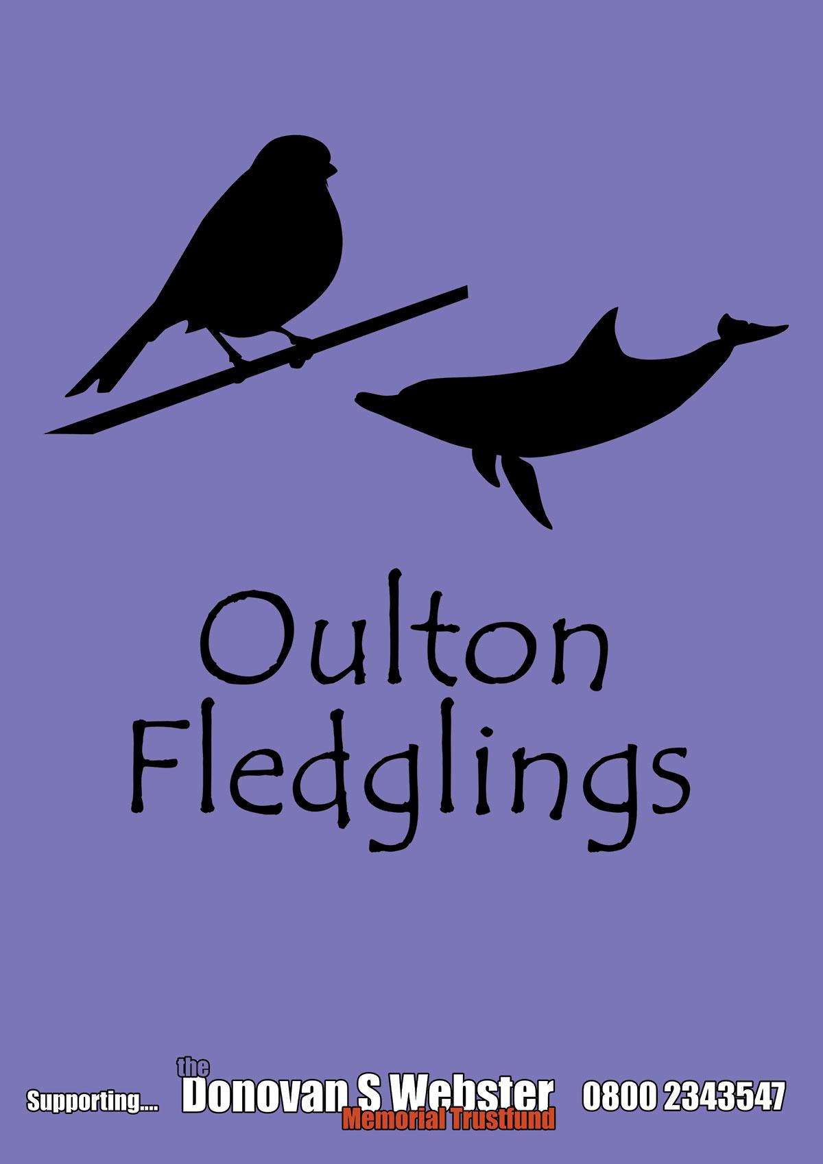 A1-Oulton-Fledglings-Steel-Banner