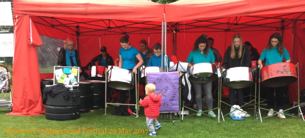 Sparrows 2017 at Meanwood Festival